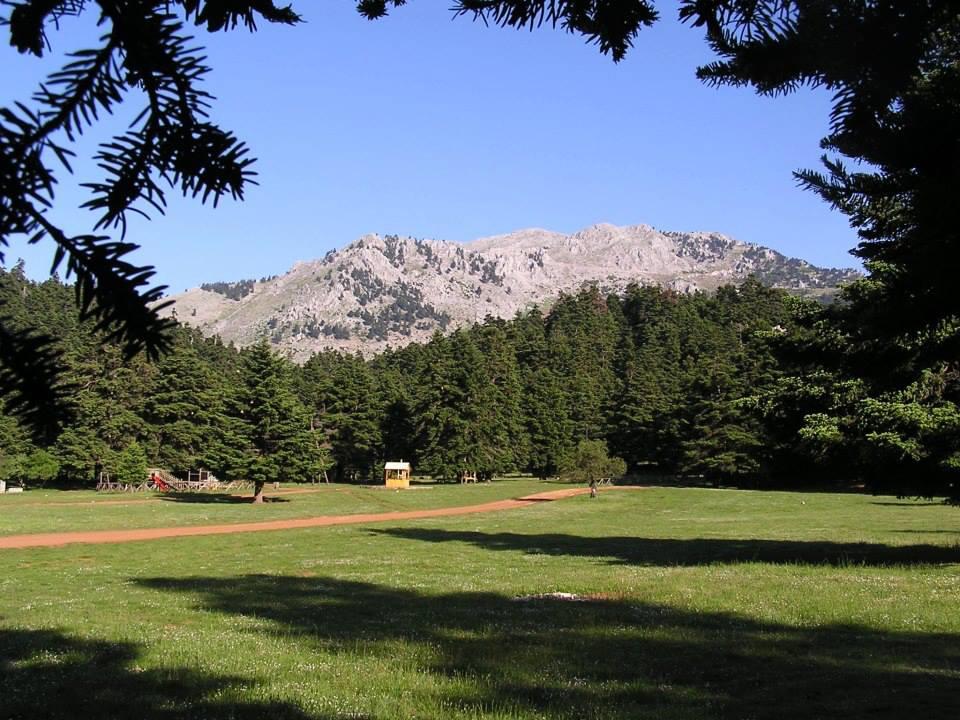 Το πανέμορφο οροπέδιο στο δάσος της Αρβανίτσας | www.lightgear.gr