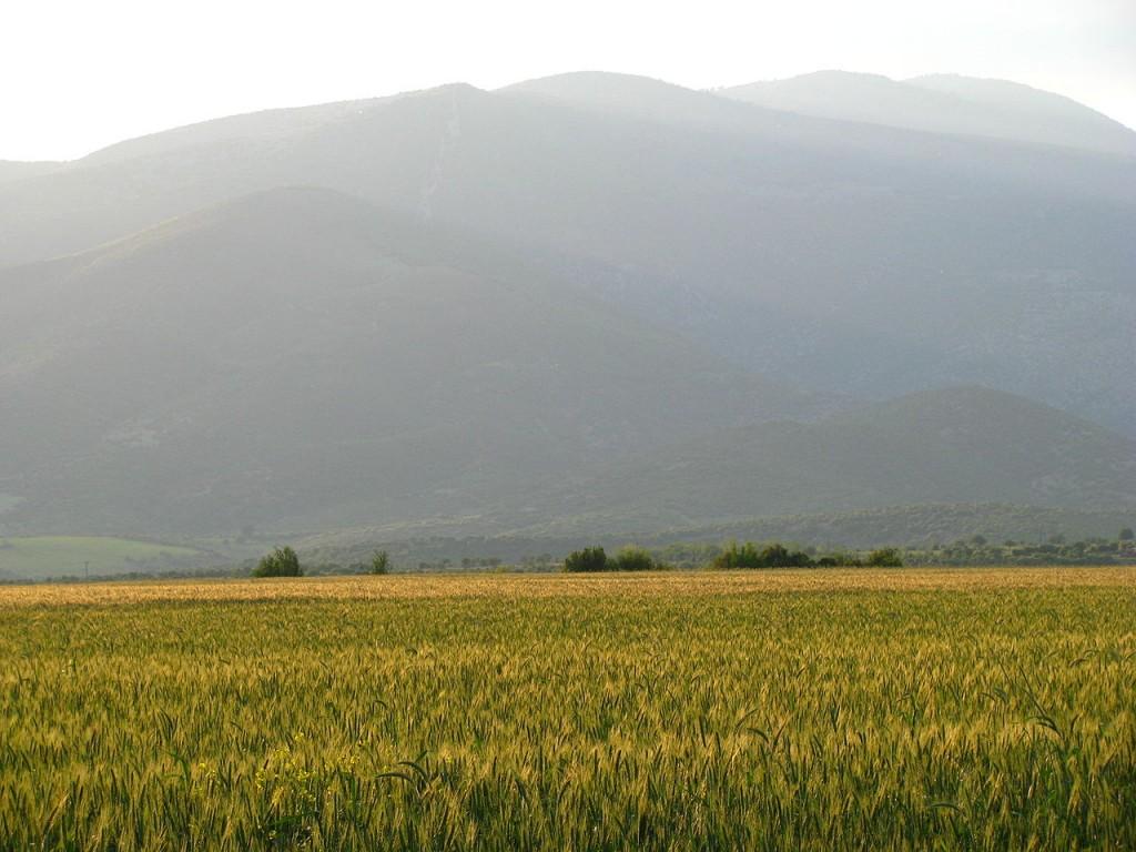 Πανοραμική άποψη του όρους Πάικο δίπλα σε πολύ χρωμο λιβάδι | www.lightgear.gr