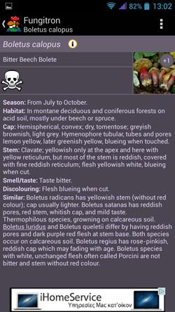 Εξειδικευμένες πληροφορίες σχετικά με το μανιτάρι Boletus Calopus | www.lightgear.gr